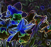 flowers by demor44