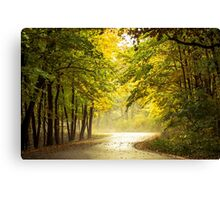This way! Canvas Print