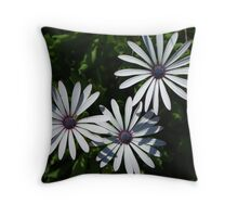 Dainty Throw Pillow