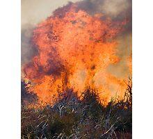 En Fuego, Hot Stuff Photographic Print
