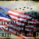 Freedom Isn't Free by Jonicool