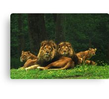 pride of place Canvas Print