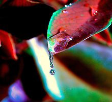 Drop of water for the spirit of the Earth by hady elwy