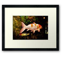 Pink And Orange Gold Fish Framed Print