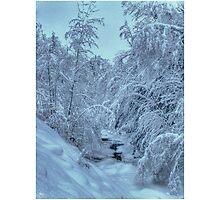 Blue Light on New Snow Photographic Print