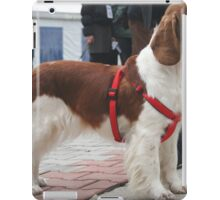 Cool English Springer Spaniel iPad Case/Skin