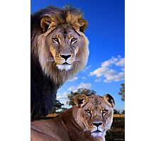 King and his Queen Photographic Print