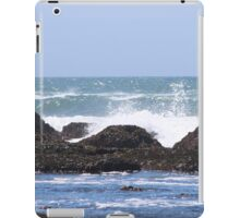 JV Fitzgerald Marin Preserve iPad Case/Skin