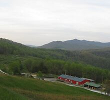 Orchard off Blue Ridge Parkway by kmdphotog