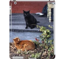 Two Cats in the Yard iPad Case/Skin