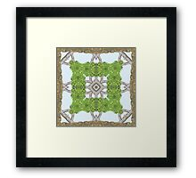 Bark Leaves Stone Kaleidoscope Art 8 Framed Print