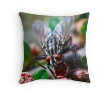 I spy a Fly Throw Pillow
