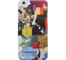 hummingbird 2 iPhone Case/Skin