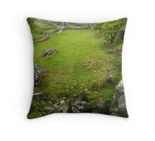 Old farm - Llyn Cregennen Throw Pillow