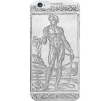 16th Century Anatomy iPhone Case/Skin