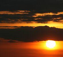 Orange and Black Sunset by Pamela Jayne Smith