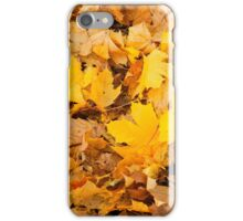 Autumn yellow leaves  iPhone Case/Skin