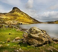 Llyn Cregennen -The Frog by eddiej