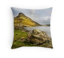 Llyn Cregennen -The Frog Throw Pillow