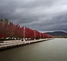 Lake Burley Griffin Sidewalk by Josh Boucher