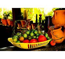 Tomato harvest Photographic Print