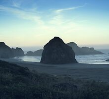 Seal Rocks2 by Bellavista2