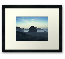 Seal Rocks2 Framed Print