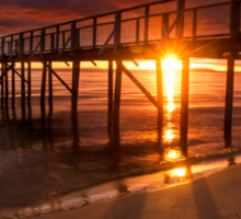 Grateful to see another sunrise - Sorrento, Mornington Peninsula Sticker