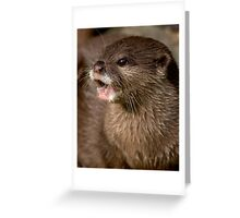 Short clawed otter! Greeting Card