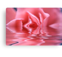 Water Rose! Canvas Print