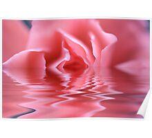 Water Rose! Poster