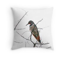 Red Shafted Northern Flicker Throw Pillow