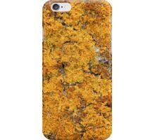 Liken Lichen 1 iPhone Case/Skin