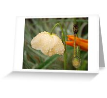 Diversity Dewdrops: Greeting Card