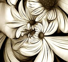 Crazy Daisies by Kelly Cavanaugh
