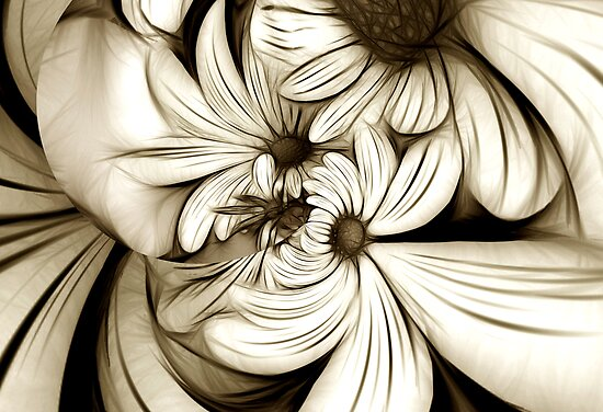 Crazy Daisies by Kelly Cavanaugh