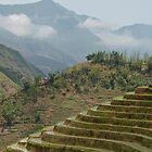 Images of Vietnam by emmettm