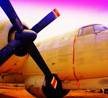 Purple Prop Plane by rtographsbyrolf