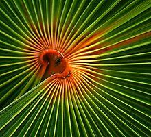 Natures Own  Spherical Art by Virginia N. Fred