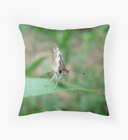 Tropical Checkered Skipper Throw Pillow