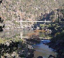 Cataract Gorge - Launceston, Tasmania by Ruth Durose