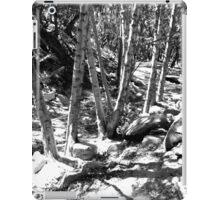 Black And White Landscape 22 iPad Case/Skin