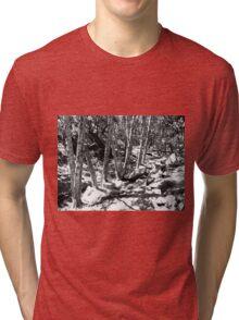 Black And White Landscape 22 Tri-blend T-Shirt