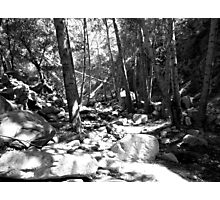 Black And White Landscape 23  Photographic Print