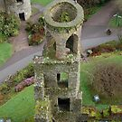 Blarney Castle Tower, Ireland by Corrie Wharton