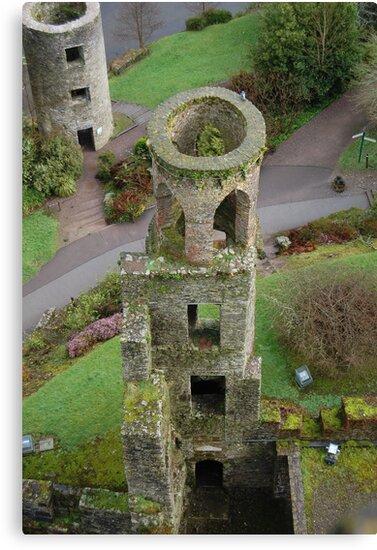 Blarney Castle Tower, Ireland by Corrie Wharton