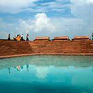 Reflective Lotus Lake by Rene Edde