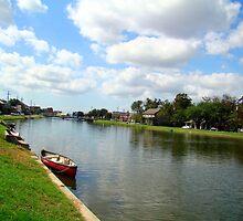Bayou Saint John by Wanda Raines
