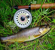 Nice Brown by DanTheBugleMan