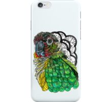 Green Cheeked Conure iPhone Case/Skin